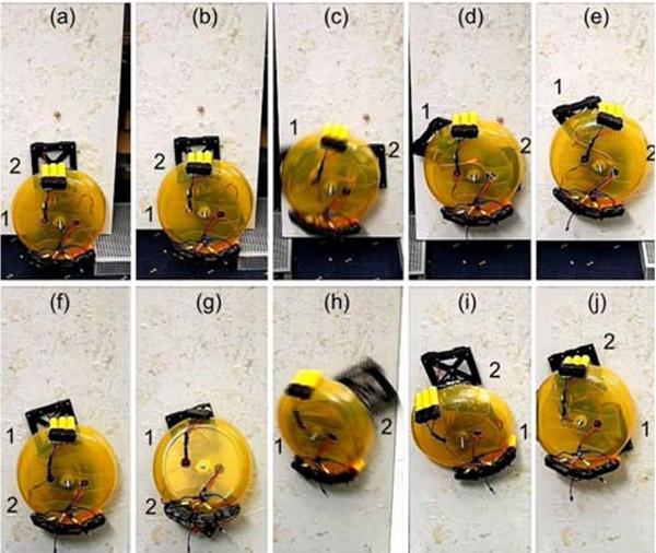wall_climbing_robot_2.jpg